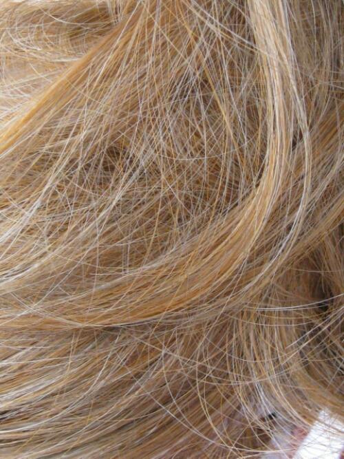 A few grey hairs #NaBloPoMo